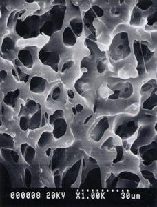 多孔体プラスチック 連続気孔性多孔質 プラスチック